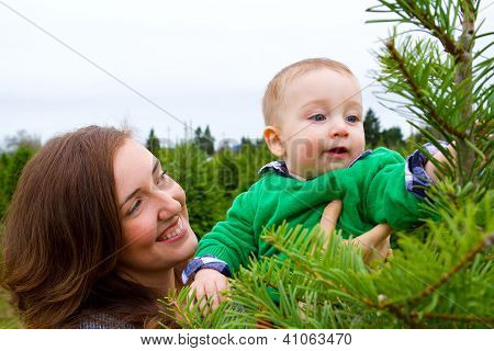 Christmas Tree Farm Portraits