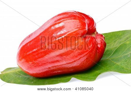 Rose Apple Fruit  On White