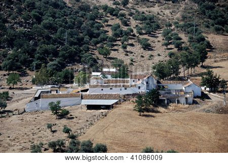 Spanish farm, Andalusia, Spain.