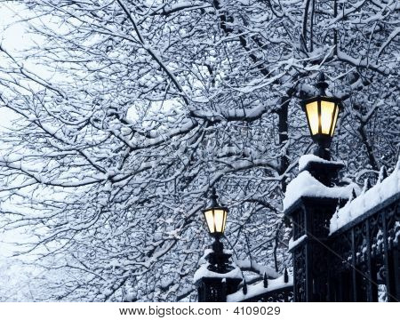 Street Lamps In The Snow