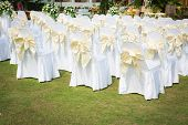 foto of ceremonial clothing  - Wedding ceremony in a beautiful garden - JPG