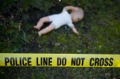 stock photo of dead-line  - Crime scene in the forest - JPG