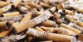 Cemetery Of Cigarettes 2