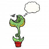 picture of carnivorous plants  - cartoon carnivorous plant - JPG