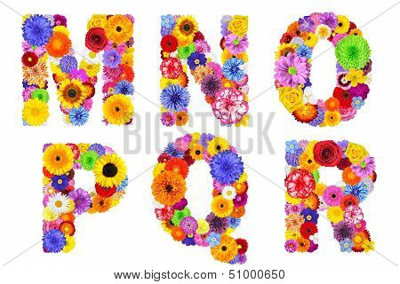 Floral Alphabet Isolated On White - Letters M, N, O, P, Q, R