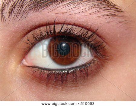Feminine Eye - Makeup