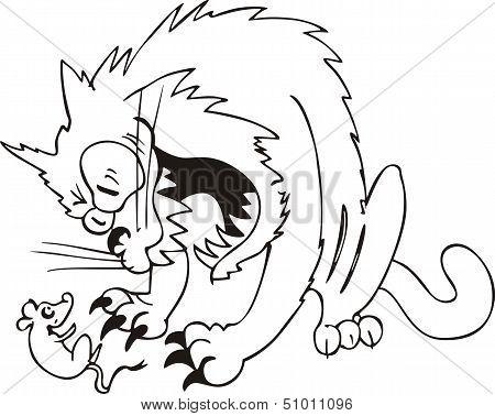 Aggressive Cat Caught Mouse