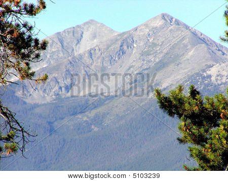 Mountain Repose