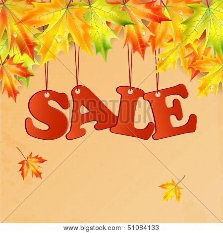 Word Sale And Autumn Maple Leaves.seasonal Autumn Sale.vector