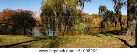 Autumn Morning In Central Park, New York - Weeping Willows By The Lake