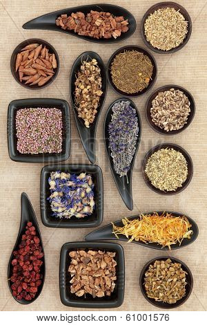 Herbal medicine selection also used in witches magical potions over old brown paper background.