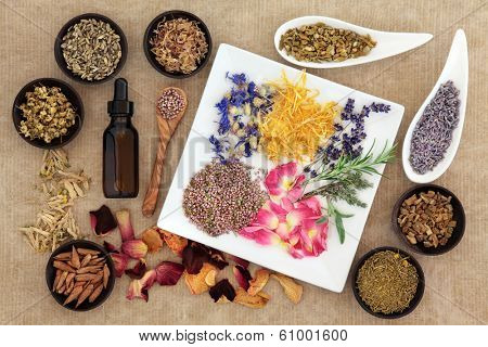 Herbal medicine selection also used in pagan witches magical potions over old paper background.