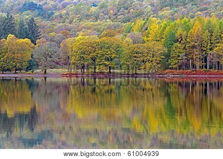 Trees ablaze with Autumn colour reflected in the calm surface of Coniston Water in the Lake District.