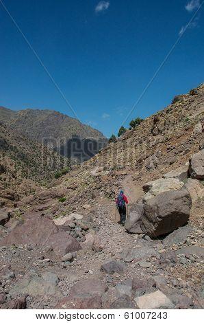 Female Trekker On Toubkal