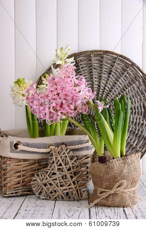 Hyacinth in pot with decorative heart on table on wooden background