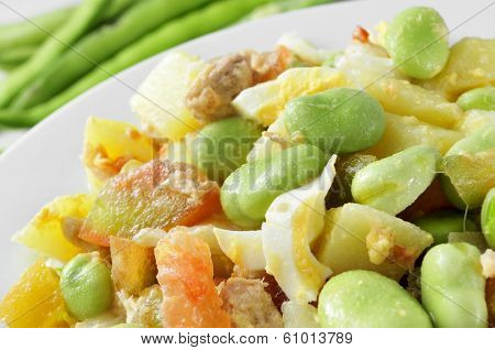 closeup of a salad with raw broad beans, tomato, tuna, boiled potato and boiled egg