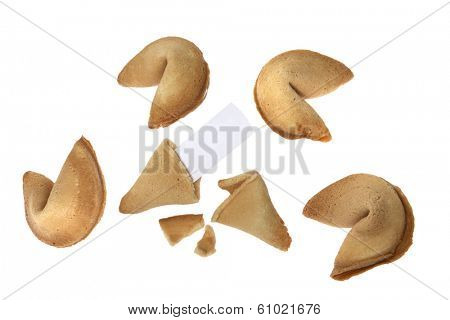Fortune cookies with blank slip of paper on white