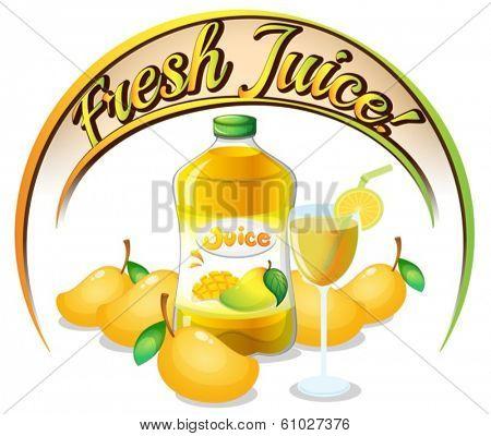 Illustration of a fresh mango juice label on a white background
