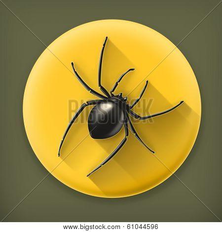 Spider, long shadow vector icon