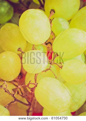 Retro Look Grape