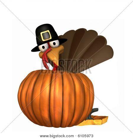 Toon Thanksgiving Turkey In Pumpkin