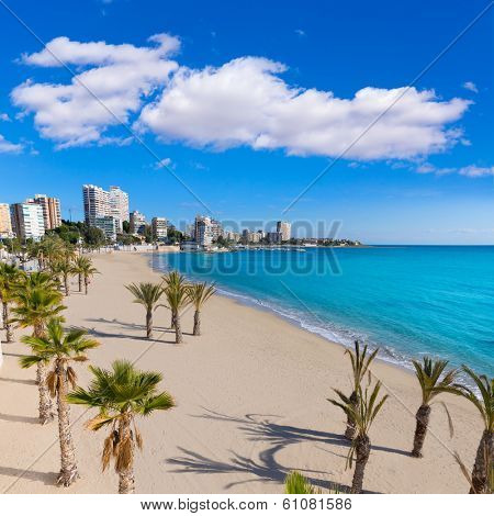 Alicante San Juan beach of La Albufereta with palms trees in Mediterranean Spain