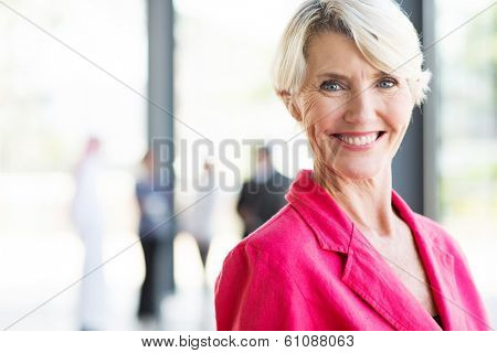 beautiful middle aged businesswoman in modern office