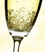 closeup of champagne flute, abstract lights background, focus on bubbles