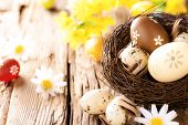 stock photo of wooden basket  - Easter eggs in nest with chamomiles blossoms - JPG