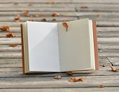 Open notebook on wood background.