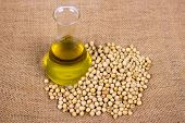 stock photo of soya beans  - Soy bean and oil placed on the sacks - JPG