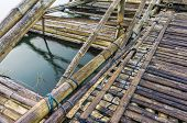 Bamboo Rafting Bridge
