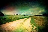 Summer landscape with a field of toned style lomography