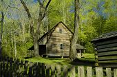 Tipton Cabin in Cades Cove of Great Smoky Mountains