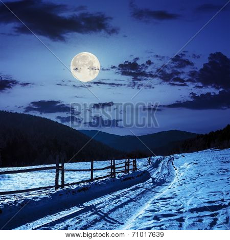Snowy Road To Coniferous Forest In Mountains In Moon Light