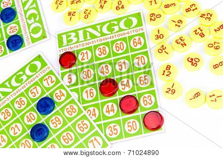 Bingo Card Game Waiting For Only One Chip To Win