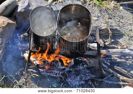 Cooking Fish On The Fire.