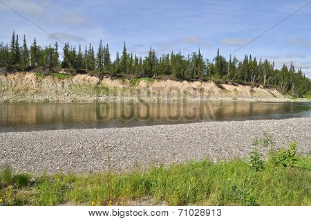 Landscape Of The Northern Boreal River.