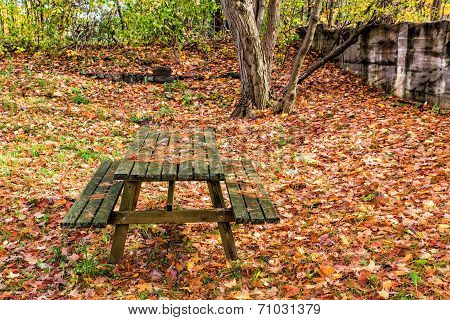 Picnic Park Bench In The Fall