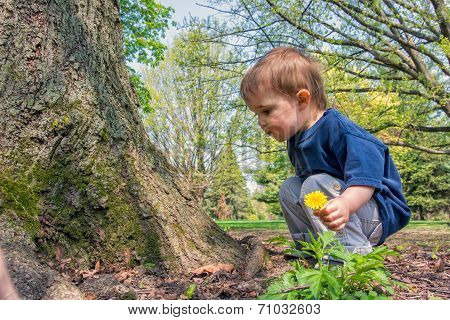 Young Boy Beside A Tree