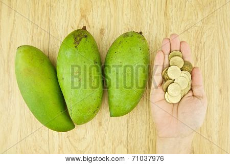 Man Buying Mangifera Indica Or Mango By Gold Coin