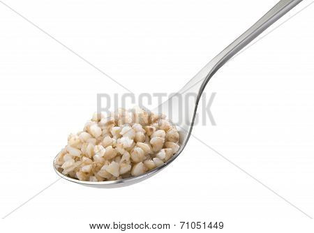 Spoon with boiled buckwheat close-up isolated