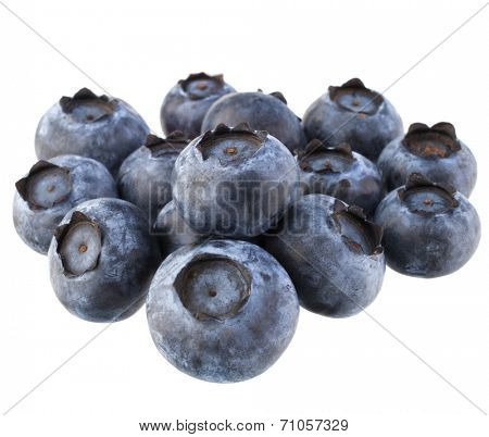 blueberry or bilberry  isolated on white background cutout