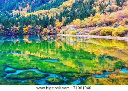Beauty Autumn In Jiuzhaigou