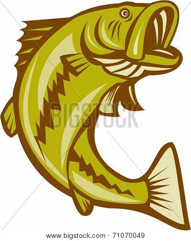 Largemouth Bass Jumping Cartoon