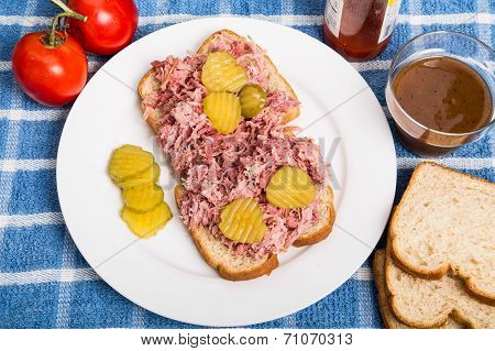 Pulled Pork Sandwich With Sliced Pickles