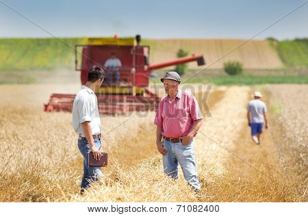 .business People On Wheat Field
