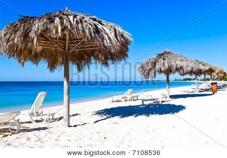The Caribbean Coast