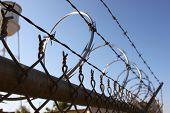 image of razor  - Metal fence with razor wire on top - JPG