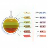 stock photo of temperature  - Time and temperature infographic of brewing tea - JPG